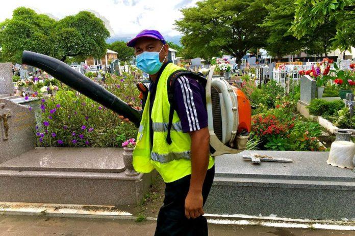 Dengue Fever: A Major Cleanup at St. Louis Cemeteries