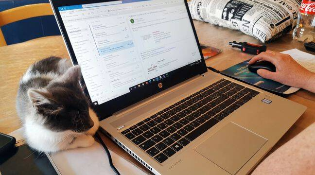 Employers will have to negotiate a minimum number of working days remotely