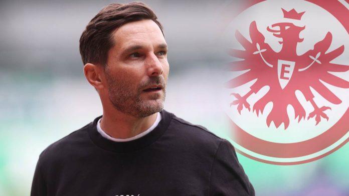 Report: An exchange between Eintracht Frankfurt and Fürth coach Stefan Little