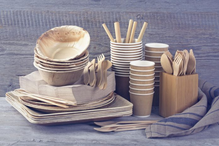 Why should you be wary of alternatives to disposable plastic dishes