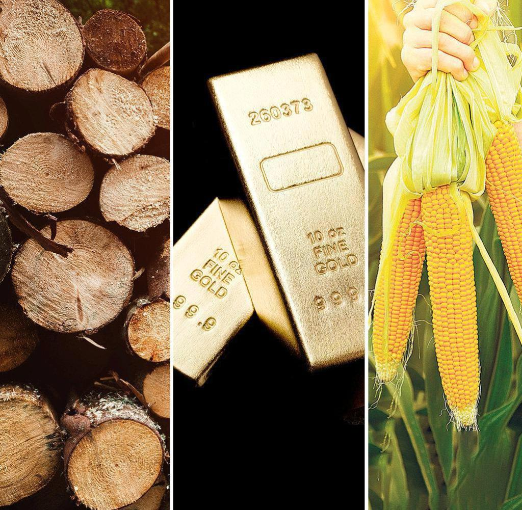 Combo golden wood raw materials corn oil