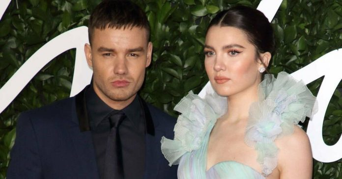 Liam Payne: After ten months of engagement, the 'One Direction' star is back