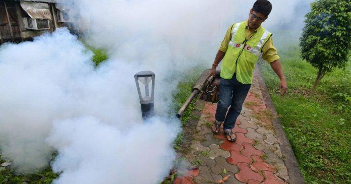 WHO: China has finally 'ridden' malaria - rts.ch