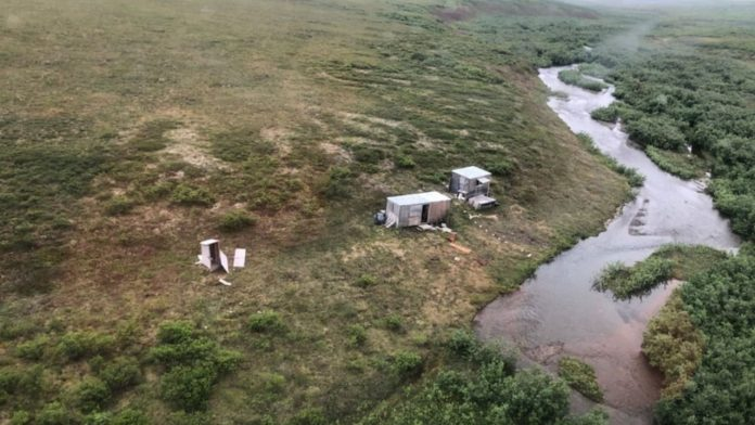 Alaska: A man injured and chased by a bear - rescuers find him through the SOS Embassy - news abroad