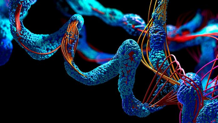AlphaFold: The Life Database aims to enable scientific breakthroughs