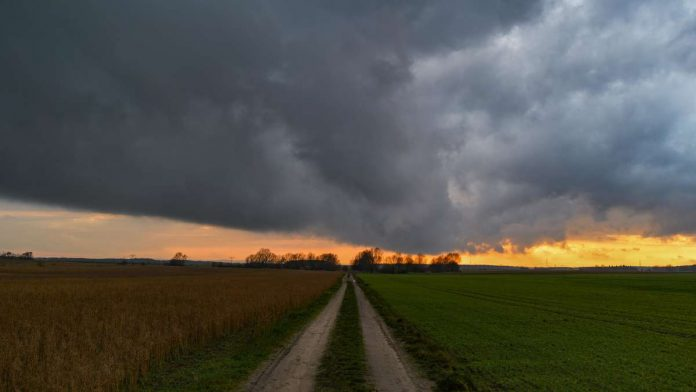 Extreme desert heat in Europe?  The expert now warns of renewed storms in Germany