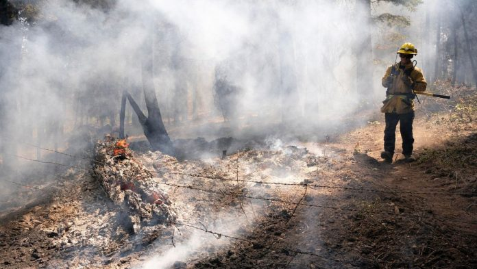 Oregon: Thousands of acres of forest destroyed by fire
