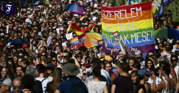 Record number of participants in the Pride Parade in Hungary