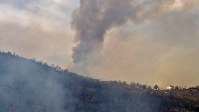 42 killed in fires in Algeria