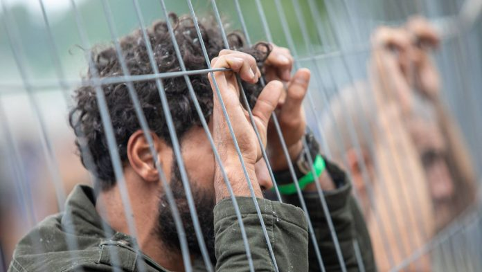 Belarus: Iraq flies home 370 migrants stranded on the border with Lithuania