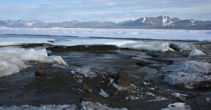 Danish researchers have discovered what is likely to be the northernmost island in the world