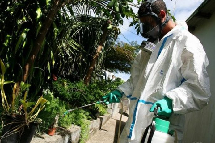 Dengue fever: 189 cases in one week, and the decline continues