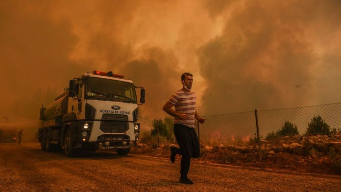 Forest fires: the situation in Greece and Turkey is approaching the peak