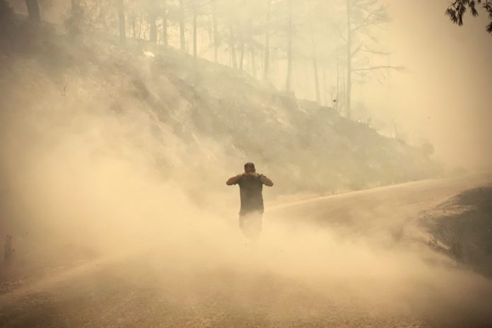 Turkey and Italy: devastating forest fires in the Mediterranean