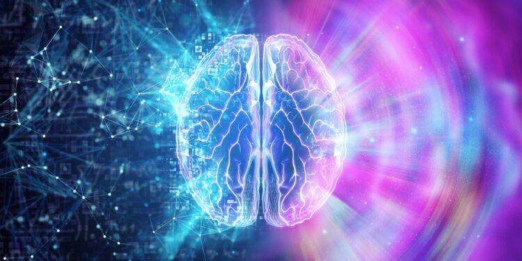 3D imaging of the brain