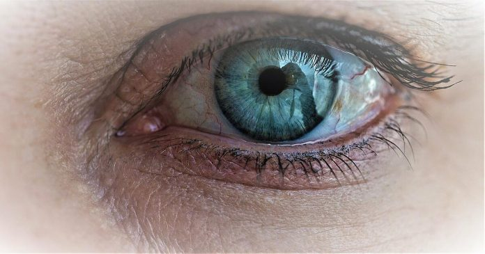 Eyes are key to early detection of Alzheimer's disease